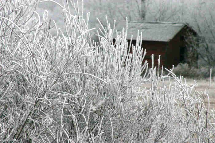 photo by Leanne Guenther